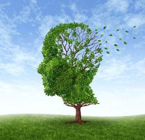bonneville-psychotherapie